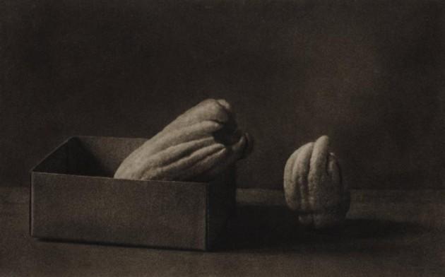 Busshukan (Fingered Citrons) Yasuzo Nojima 1930 bromoil print